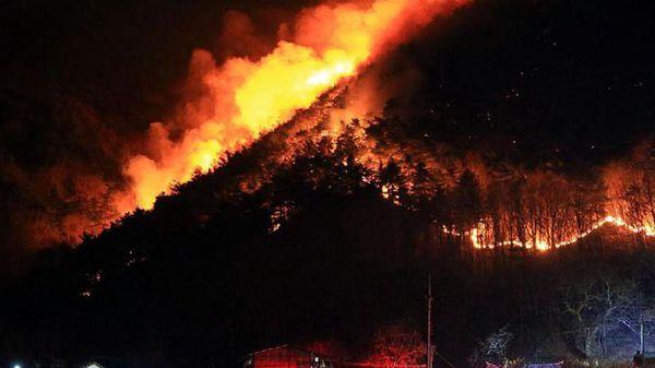 韓國江原襄陽遭山火侵襲 大火映紅天際