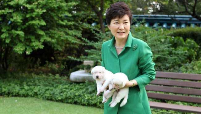 韓國總統樸槿惠網上秀與愛犬嬉戲照片(組圖)