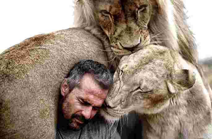 사자와 속삭이는 남자