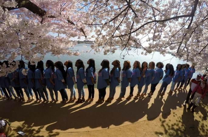 주말 좋은 날씨에 벚꽃 즐기기 좋아