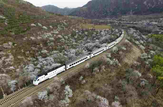 봄을 향하여 달리는 열차