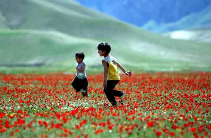 전 신화사 촬영사 자비훌라 타마나가 카메라로 기록한 아프가니스탄