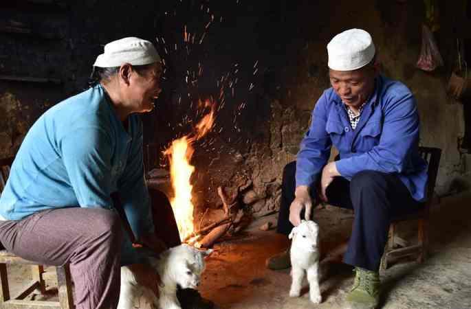 후이족마을의 빈곤해탈 선구자---공산당원 웨이덩디엔
