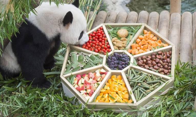 旅韓大熊貓享中秋美食