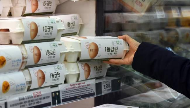 韩国禽流感导致鸡蛋价格上涨 政府呼吁配合防疫