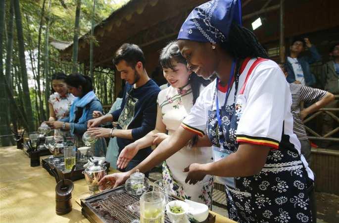산둥 칭다오: 유학생들 중국 차문화 체험