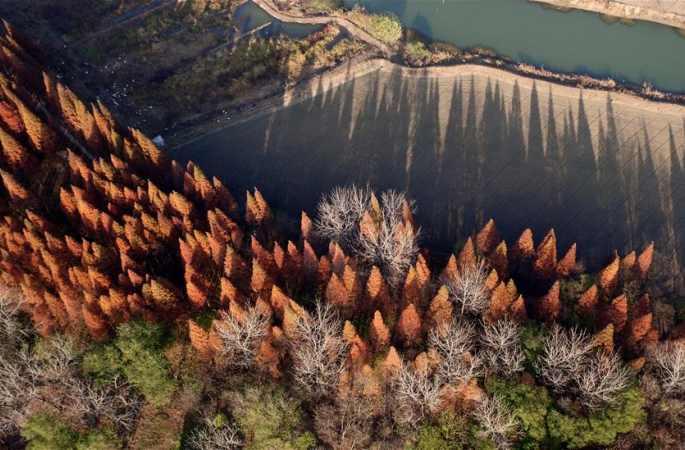 장쑤 훙쩌: 그림처럼 아름다운 구옌의 초겨울 경치