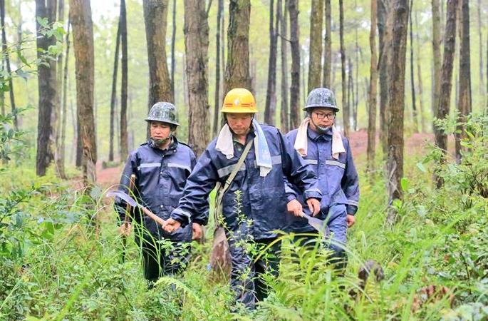 장시 융펑: 고온아래의 삼림 감시원